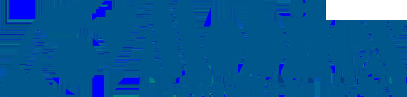 Mobilex